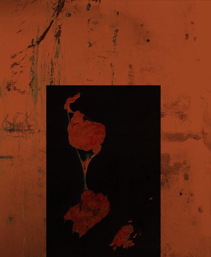 Sébastien Grenier, Ukiyo-e XIV, estampe sur papier, 45X37