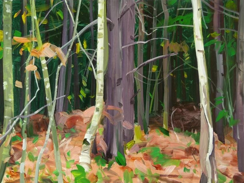Olivier Morel, Forêt 7, acrylique sur toile, 97 x 130