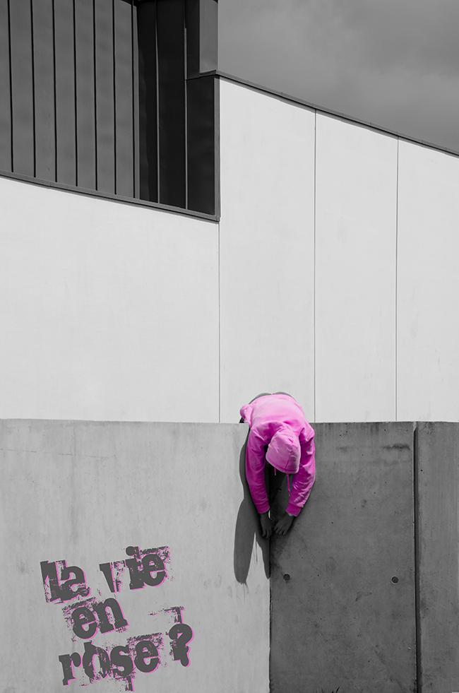 artiste Françoise Peslherbe, La vie en rose, photographie sur aluminium, oeuvre tirée à 5 exemplaires, 60X40