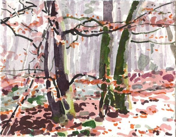 Forêt 22, Olivier Morel, 13x16.5, aquarelle