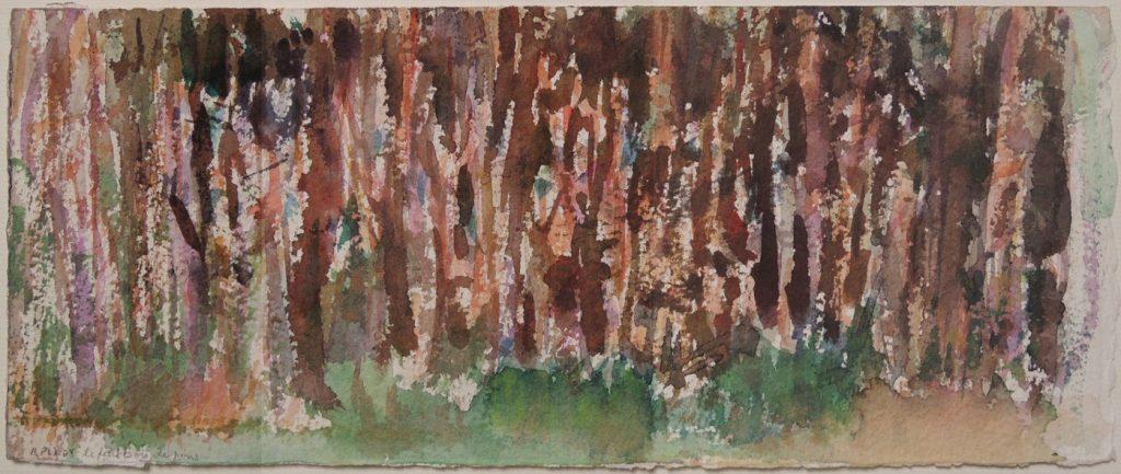 Le Petit bois de Pin, Raphaelle Pia, 28.5x12.5, aquarelle