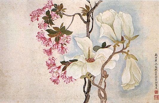 Fleurs de magnolias et de cerisier ornemental, Yun Shouping, 1672, dynastie Qing