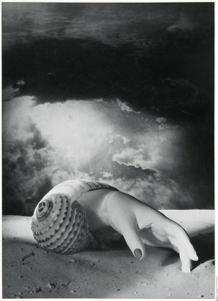 Dora Maar, sans titre main et coqullage, photographie, 1934