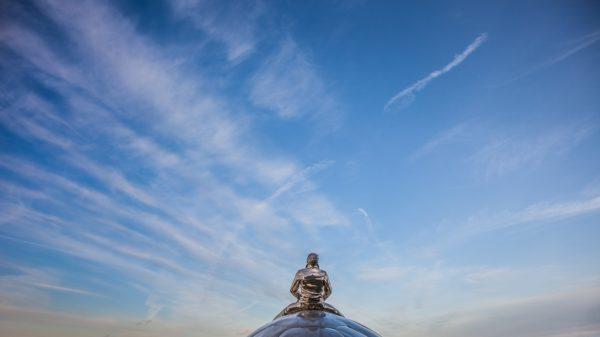 Flying turtle - Justin Mertens - Photographie numérique