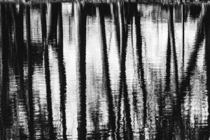 Céline Troffigué • Reflets d'âme