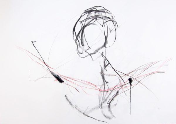 Grande anatomie 1 - LN Le Cheviller