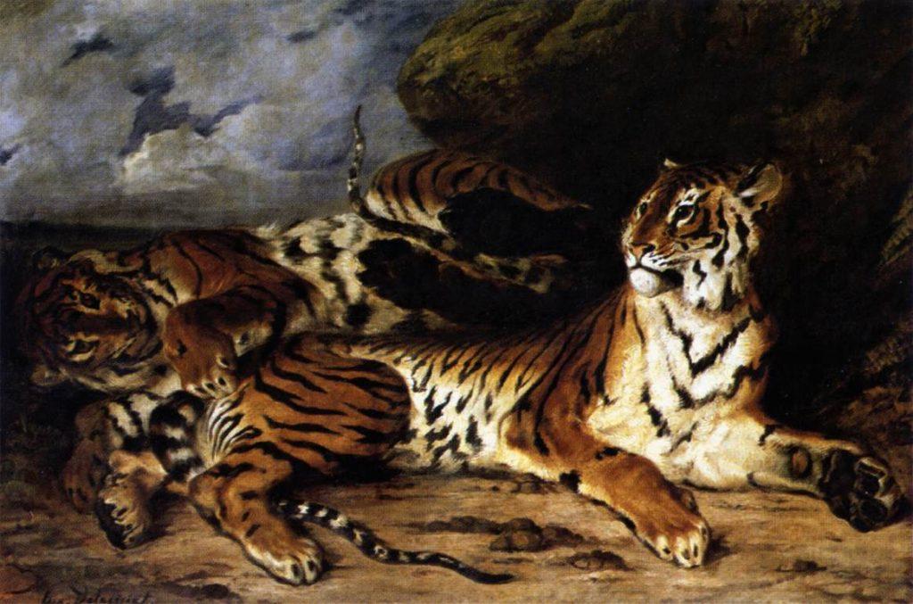 Tigre animaux