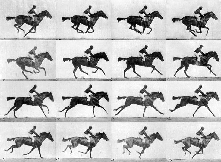 Muybridge_race_horse_gallop
