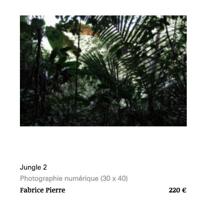 Jungle 2 Fabrice Pierre