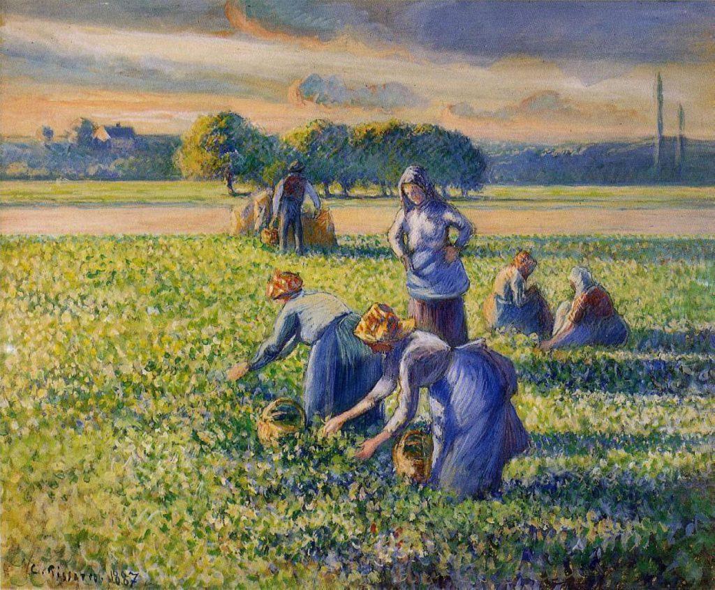 picking-peas-pissaro